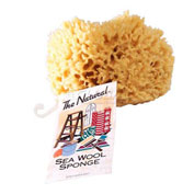 "5-6"" Natural Sea Wool Sponge, #1 Cut, 12/Pk"