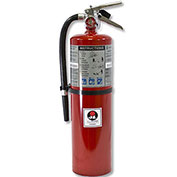 Fire Extinguisher, 10 Lbs Multi-Purpose Dry Chemical