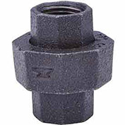 "Anvil 1-1/4"" Black Malleable Union"