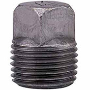 "Anvil 3/4"" Black Malleable Square Head Plug"