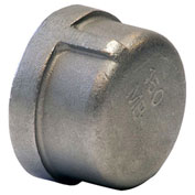 "KINGDOM 3/4"" 304 Stainless Steel Cap, FNPT"