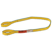"Polyester Eye & Eye Web Sling w/Durable Edge, 8'L x 2""W"