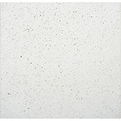 Recycled PVC Ceiling Tile, Waterproof & Washable, 2'L x 2'W, Flecked - Pkg Qty 10
